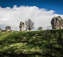 Avebury Henge Stones by Nicole Petegorsky