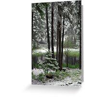 June Snow Greeting Card