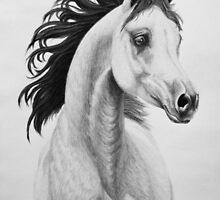 """You Lift My Spirit"" - Charcoal Portrait by SD 2010 Photography & Equine Art Creations"