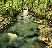 Energizer Creek by Ella Hall