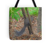 Squirrel Olympics tryouts Tote Bag