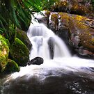 Taggerty Waterfall. by Bette Devine