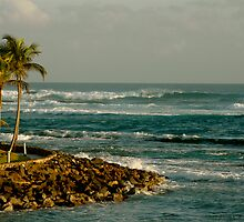 Caribe Hilton Beach by picart