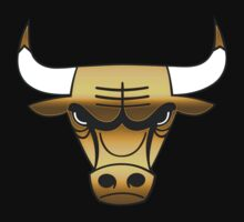 Chicago Bulls Gold by owned