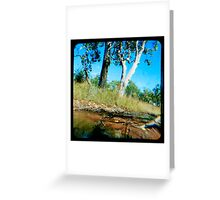 Milly's Creek  Greeting Card
