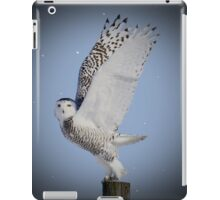 Free at last  iPad Case/Skin