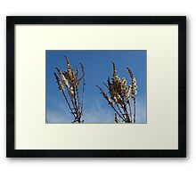 Two hands reaching for the sky Framed Print