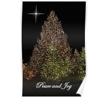 Peace and Joy ~ Lights of Christmas  Poster