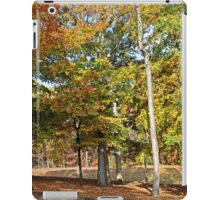 Trees and Fallen Leaves iPad Case/Skin