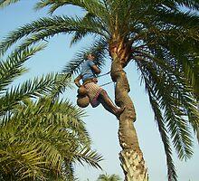 """Climbing high by """" RiSH """""""