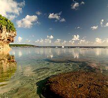 Niue Reef by zoopita