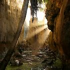 Niue Hidden Places by zoopita