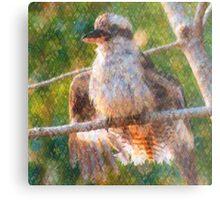 Kookaburra Sunbathing Metal Print