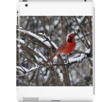 Beauty in the Snow. iPad Case/Skin