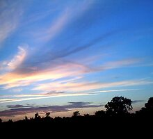 Beauty in the Sky. by Holly Schimpf