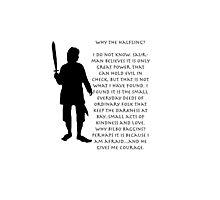 Why Bilbo? Photographic Print