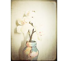 { orchid } Photographic Print