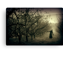 We're all looking for something... Canvas Print