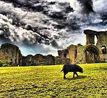Denbigh Castle HDR by Dfilmuk Photos