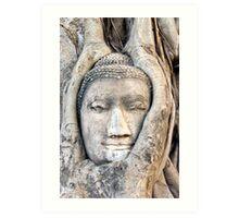 Ayutthaya buddha Art Print
