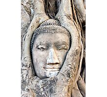 Ayutthaya buddha Photographic Print