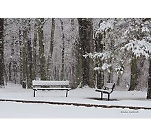 Snowy Benches Photographic Print
