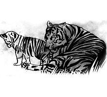 tigers Photographic Print
