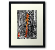Red & Yellow Peppers Framed Print