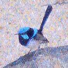 Blue Wren II by Imageo