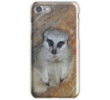 Friendly Meerkat iPhone Case/Skin