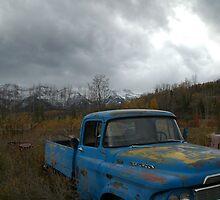 Desolate Rust by Shane Cowlishaw