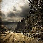 The Path by John Roshka