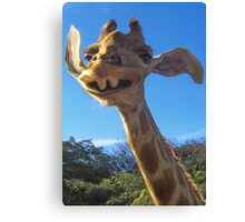 Funny Friendly Giraffe Canvas Print