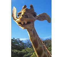 Funny Friendly Giraffe Photographic Print