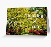 Greeting Card: Thinking of You, Friendship Greeting Card
