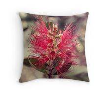 Bottle Brush 2 Throw Pillow