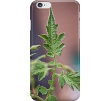 Tomato Plant Leaves Macro (3) iPhone Case/Skin