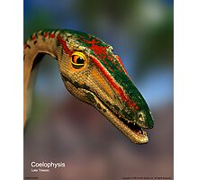 Coelophysis Photographic Print