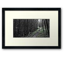 The Green Path Framed Print