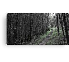 The Green Path Canvas Print