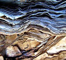 Brown earth...stormy skies.... by Kathie Nichols