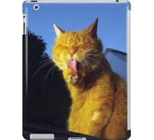 Ginger cat licking paw iPad Case/Skin