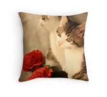 Kitten Romance Throw Pillow