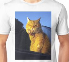 Ginger cat with toothache Unisex T-Shirt