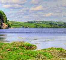 Boathouse - Laugharne by griffin