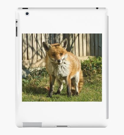 Sleepy fox in suburbia iPad Case/Skin