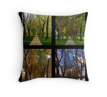 The Four Seasons at Colorado State University's Oval Throw Pillow