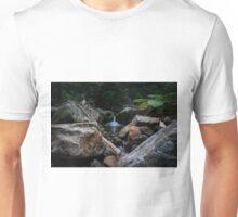 Carnarvon Gorge Waterfall Unisex T-Shirt