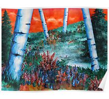 Birch Trees At Sunset Poster
