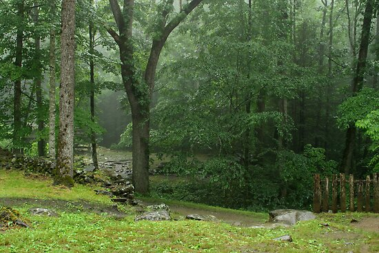 Smoky Mountain Rain by Gary L   Suddath